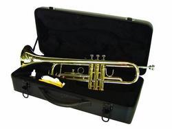 dimavery_tp10_bb_trompete_gold_3.jpg