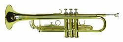 dimavery_tp10_bb_trompete_gold_4.jpg