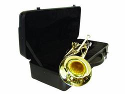 dimavery_tp20_bb_trompete_gold_3.jpg