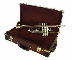 dimavery_tp30_bb_trompete_gold_2.jpg